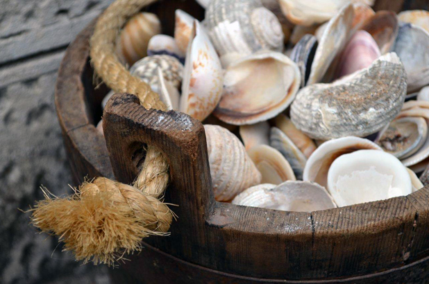 Wooden bucket containing a mixture of shells.