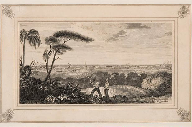 View of Sydney from Wolloomooloo Hill in 1829