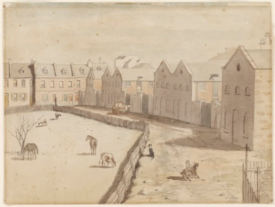 Stables of Lyons' Terrace, Macquarie St south, 1842 by John Rae. Dixson Galleries, State Library of NSW