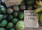 Photograph of a custard apple with other fruits in a market display
