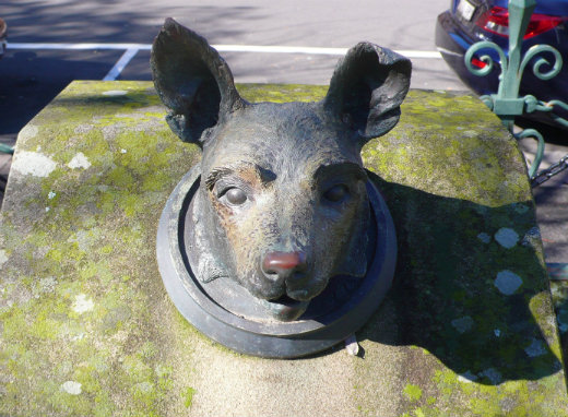 Closeup of Donna the Hearing Guide Dog Memorial